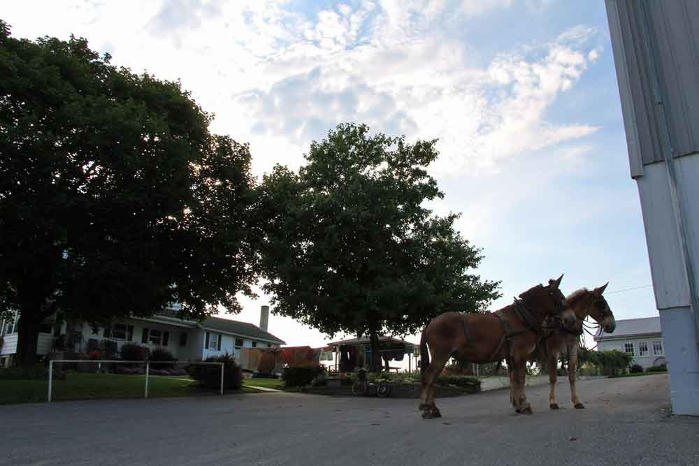 Lancaster County Amish vacation Guesthouse